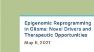 Epigenomic Reprogramming in Glioma: Novel Drivers and Therapeutic Opportunities